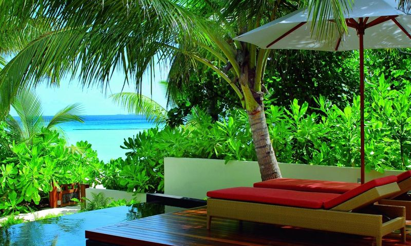 zelen na maldivah