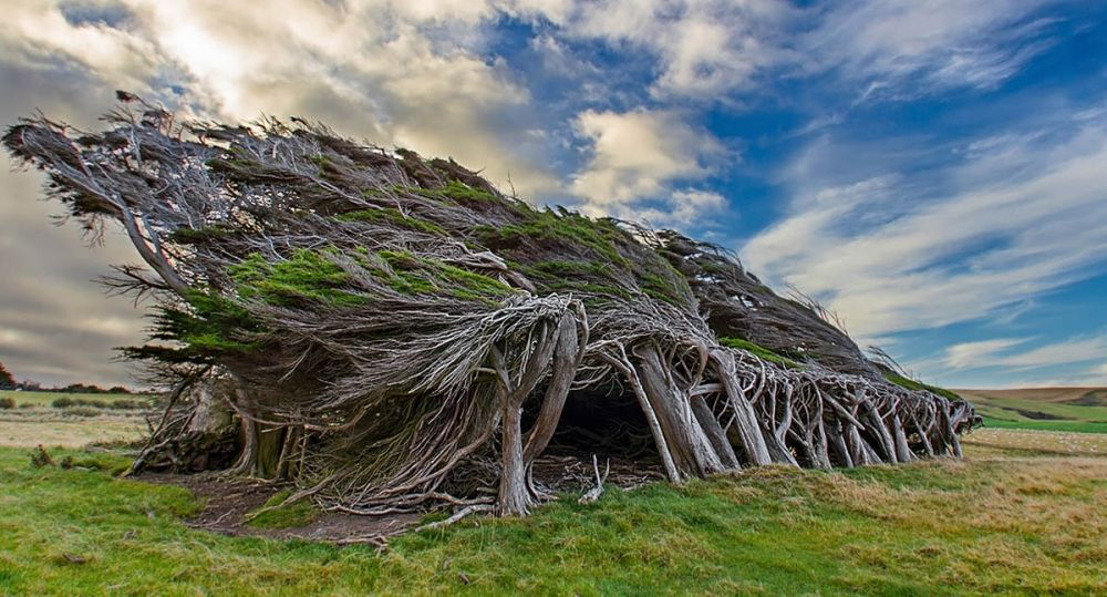 Slope Point, New Zeland