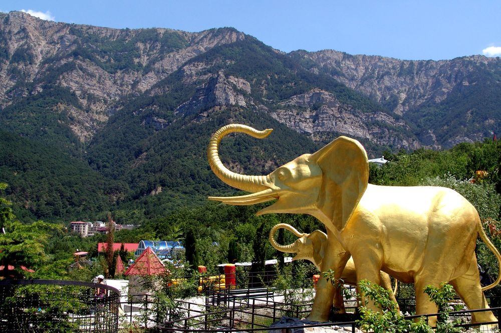 yalta zoopark
