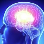 Старение мозга можно остановить!