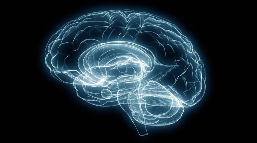 starenie mozga kak ostanovit