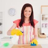 Клининг квартир: «да!» профессиональной уборке