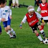 Проблема выбора спортивной секции для ребенка. В какую секцию отдать ребенка?