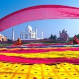 Индия и её контрасты. Отзыв туриста.