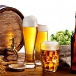 Где именно и как появилось на свет пиво?