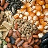 Где купить качественные семена?